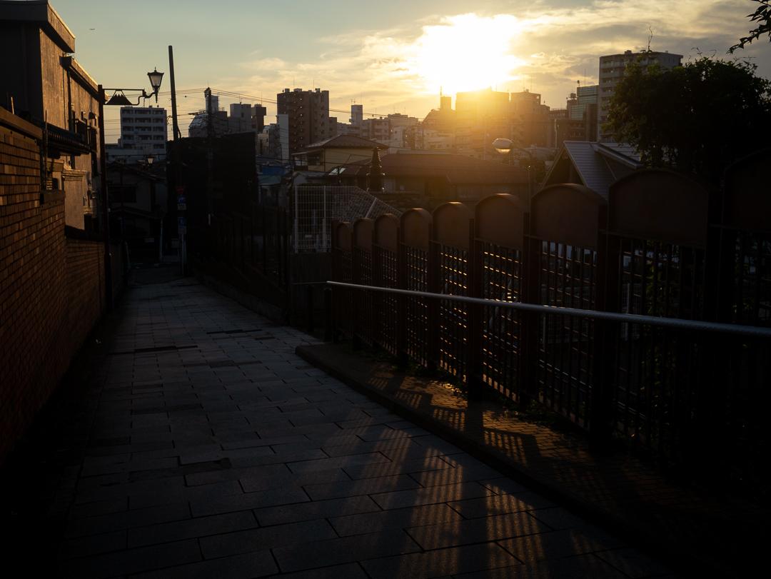 谷中 富士見坂